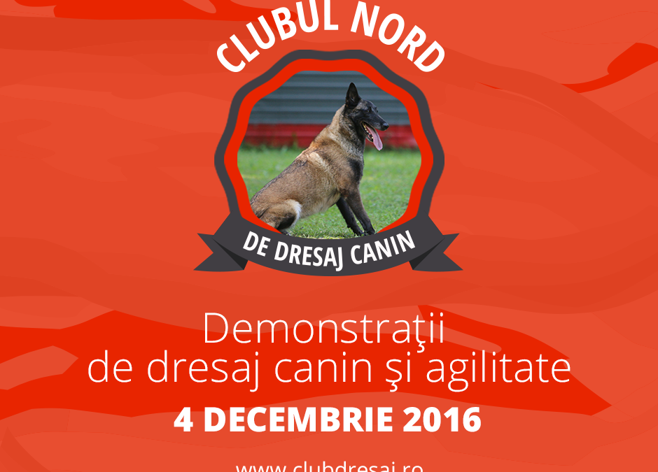 Oradea:Club Nord Dresaj Canin invita iubitorii de animalute la evenimentul de lansare oficiala